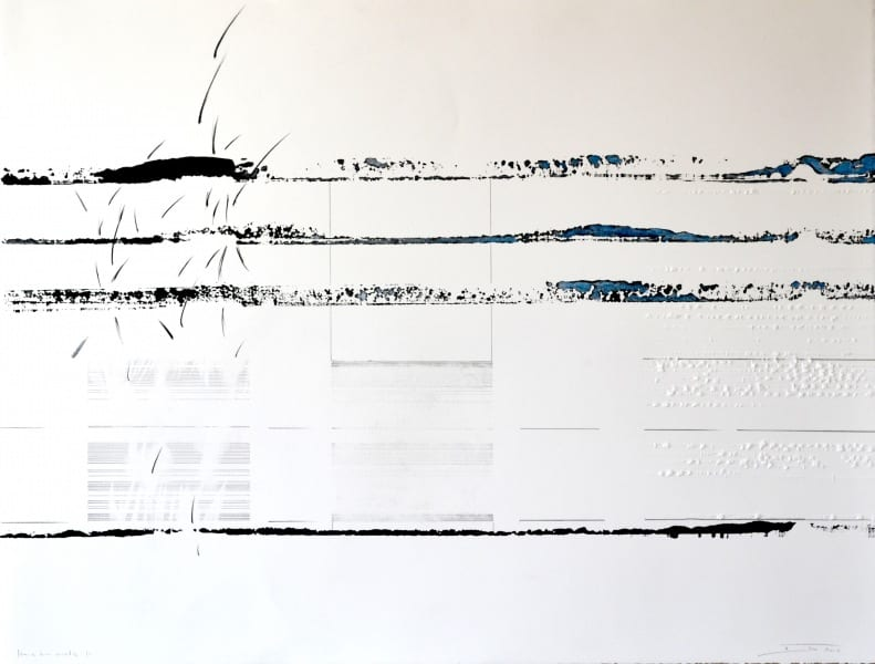 Suisse-2016-Hors-les-mots-11-Monotype-par-estampage-encre-et-crayon-sur-papier-BFK-50x65-2014-450-euros